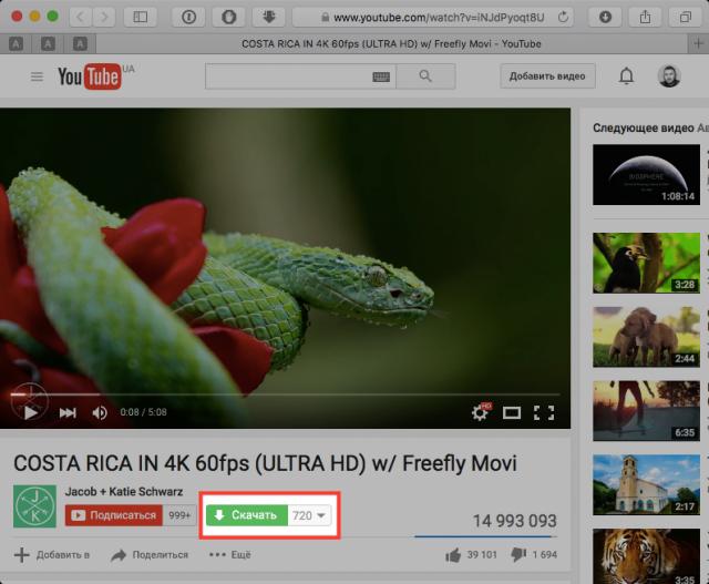 С помощью расширения FastestTube можно скачать любое видео с ютуб канала
